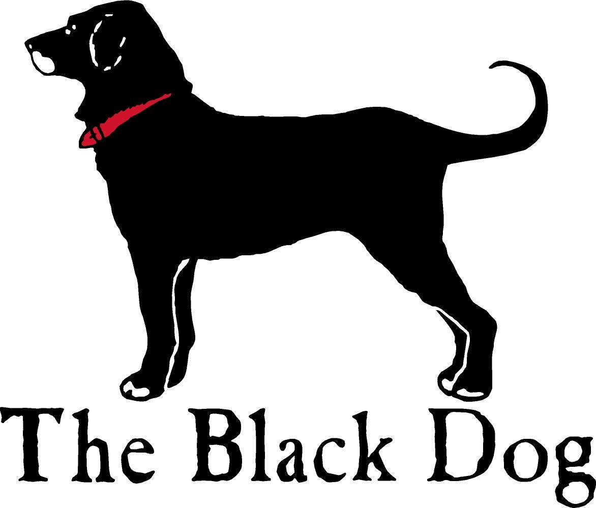 Black Dog Cape Cod